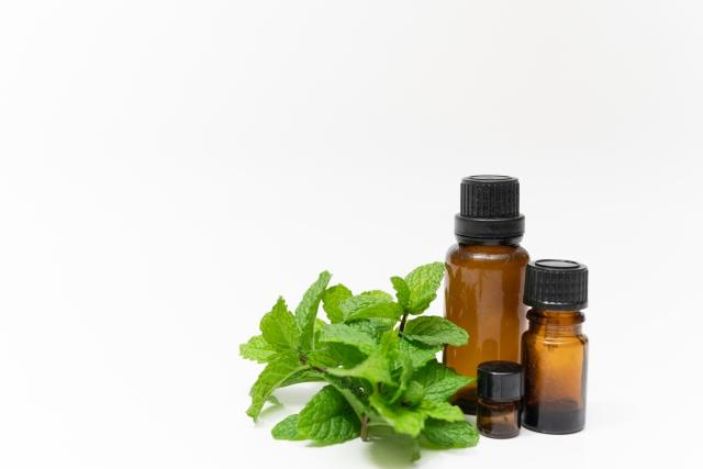 コロナウィルスの予防にはハッカ油が有効